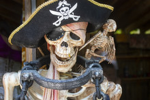 Pirate Skeleton Fstened To Pos...