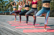 Low angle of cheerful fit women repeating after yoga instructor. They are standing on one leg while doing meditation outdoor. Natural balance concept