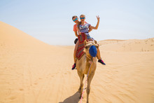 Young Couple Sitting On A Camel In A Desert