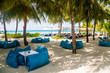Great place to chill under the palm on a paradise island. Blue cushions lying under the palm