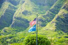 USA Flag On The Beautiful Gree...