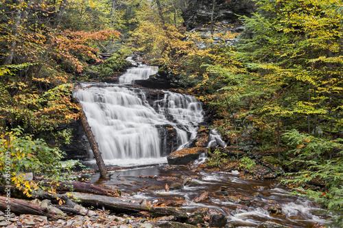 Valokuva  Autumn at Mohican Falls - Ricketts Glen, Pennsylvania