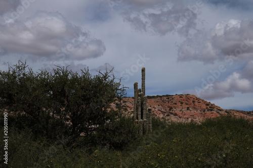 Poster de jardin Desert de sable Carretera y paisaje. Jujuy, Humahuaca