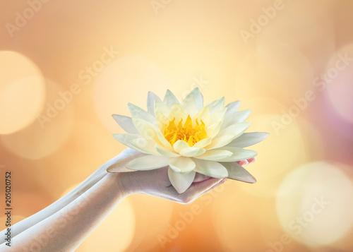 Stampa su Tela Vesak day, Buddhist lent day, Buddha's birthday, Buddha Purnima worshiping, and