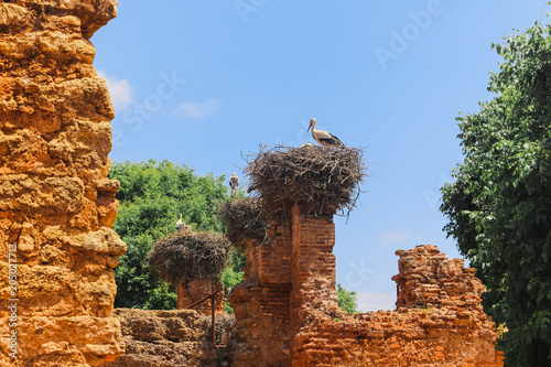 Poster Oude gebouw Stones on the place of ancient city in Morocco