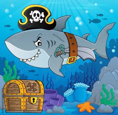 Staande foto Voor kinderen Pirate shark topic image 5