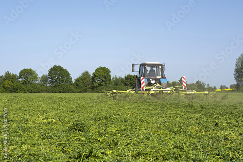the tractor with the unit evenly spreads the chamfered alfalfa, so that it reach Wallpaper Mural