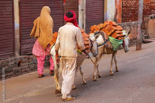 Foto op Plexiglas Ezel Local man walking with donkeys that are carrying bricks in Taj Ganj neighborhood of Agra, Uttar Pradesh, India