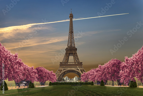 Poster Paris Eiffel tower from Camps of Mars at sunset