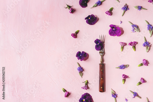 Fototapeta Variety of purple edible flowers for dish decorating with vintage fork over pink pastel background. Top view, space. obraz