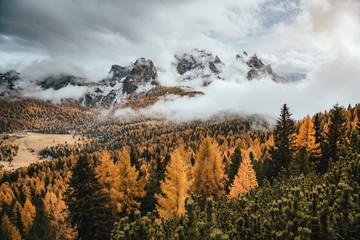 Fototapeta Vintage Great view of the yellow larches. National Park Tre Cime di Lavaredo, Dolomiti alp, Tyrol, Italy.