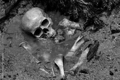 Canvas Print Skull and bones in pit which has flood in raining day on scary graveyard area