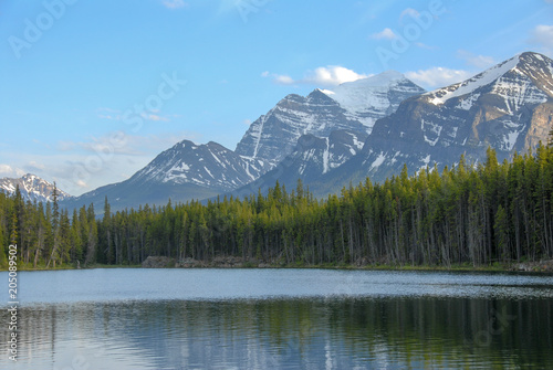 Poster Lac / Etang 春のカナディアン・ロッキー バンフ国立公園 ハーバート湖(カナダ)