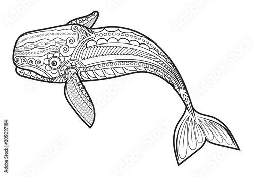 Fototapeta premium wektor Wieloryb dla dorosłych anty stres kolorowanki.