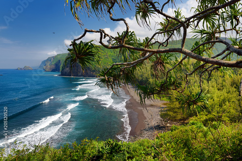 Foto op Canvas Restaurant Stunning view of rocky beach of Pololu Valley, Big Island, Hawaii, taken from Pololu trail, Hawaii