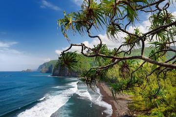 FototapetaStunning view of rocky beach of Pololu Valley, Big Island, Hawaii, taken from Pololu trail, Hawaii