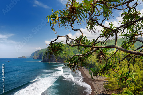 Fotobehang Zeilen Stunning view of rocky beach of Pololu Valley, Big Island, Hawaii, taken from Pololu trail, Hawaii