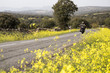 Man driving motorbike on remote road with green nature and yellow flowers growing on field.