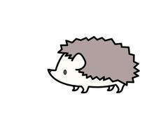 ハリネズミ(色)
