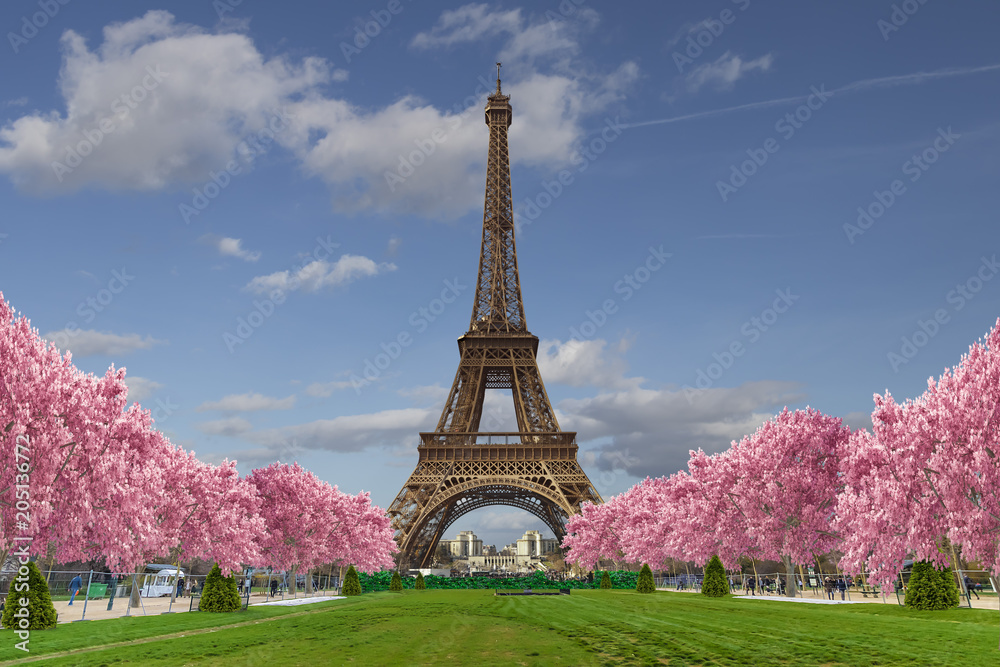 Fototapeta Eiffel tower from Camps of Mars over blue sky with clouds