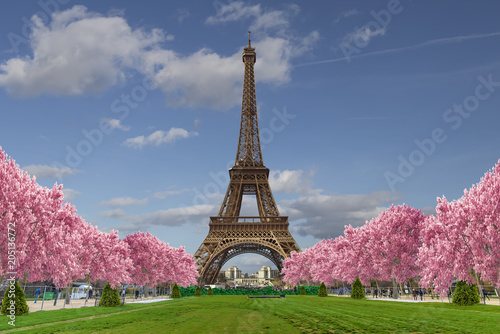 Obraz Eiffel tower from Camps of Mars over blue sky with clouds  - fototapety do salonu
