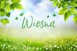 Wiosna - widok na trawę, kwiaty oraz na łąkę z pięknym rozmyciem bokeh