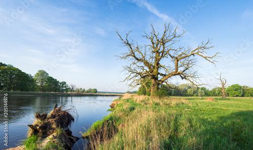 Foto auf Gartenposter Fluss Rzeka Warta przed Poznaniem, w okolicy Rogalina