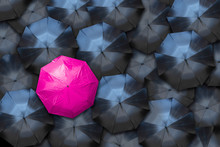 Nonconforming Feminine Umbrella