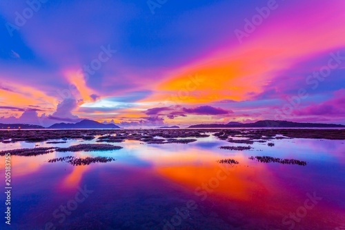 Photo scenery sunrise above the coral reef during low tide in Phuket island