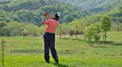 Poster Golf 新緑のゴルフコースとゴルファー