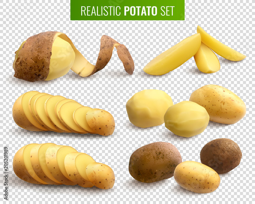 Fotografering Realistic Potato Set