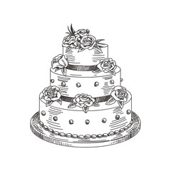 vector hand drawn a wedding cake Illustration