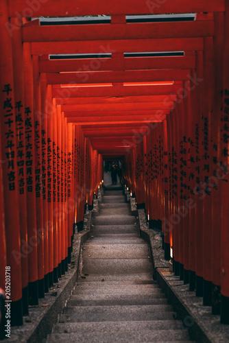 Fotografia Japanese shrine stairs downstairs