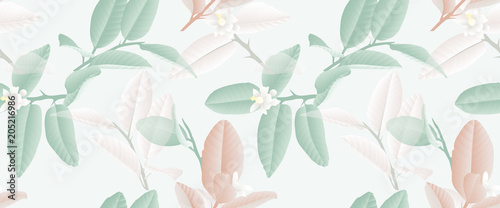 Obraz Seamless pattern, hand drawn pastel green, brown and white lime flowers and leaves on light green background - fototapety do salonu