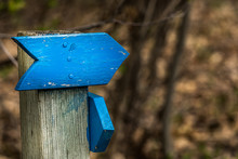 Follow The Blue Wooden Arrow.