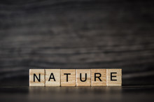 The Word Nature, Consisting Of...