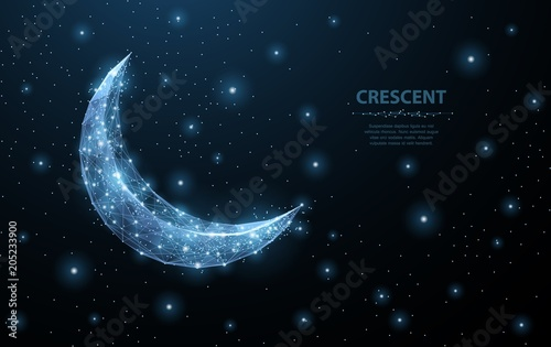 Canvas Vector crescent moon