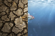 Leinwandbild Motiv Climate Change and Global warming concept. Fish bone on cracked earth and Fish in ocean metaphor climate change impact to Aquatic Animals