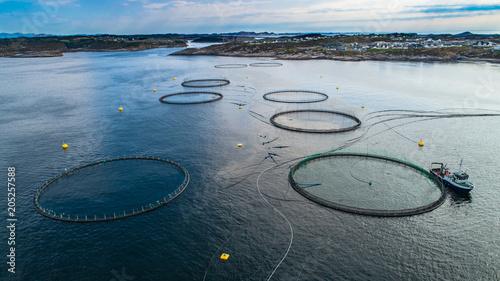 Salmon fish farm in fjord. Norway, Bergen. Canvas Print