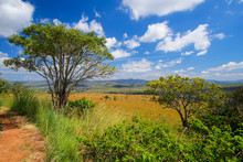 View Over The Lowveld Plateau As Seen From The Panoramic Route In The Blyde River Canyon, South Africa