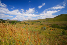 View Over The Highveld Plateau...