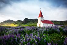Lutheran Myrdal Church Surroun...