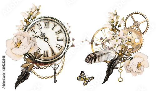 Fotografie, Obraz  steam punk watercolor Illustration with feathers, clockwork,  jewelry, Flowers