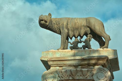 Foto op Canvas Historisch mon. Statua in bronzo della lupa di Roma