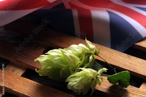Foto op Plexiglas Bier / Cider Humulus lupulus