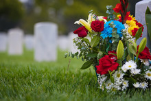 White Grave Markers And Flower...