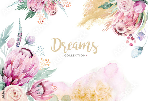 Hand drawing isolated watercolor floral illustration with protea rose, leaves, branches and flowers Canvas Print