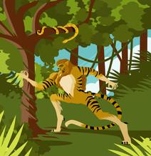 Tiger Hunter Man