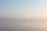 A very minimalistic view of a lake at dawn, with soft light, war - 205332900