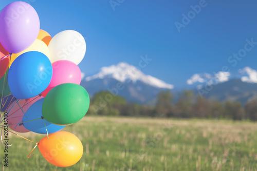 Foto op Plexiglas Groene Multicolored balloons outdoor festival on blue sky background